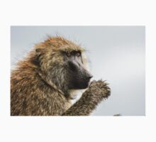 Close-up portrait of an Olive baboon (Papio anubis) by PhotoStock-Isra