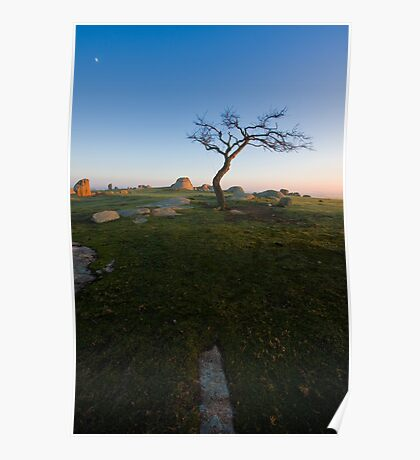 Sunrise at Dog Rocks Poster