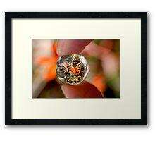 Crystal Ball Orange Orchid Framed Print