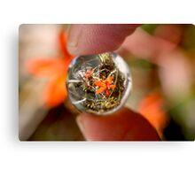 Crystal Ball Orange Orchid Canvas Print