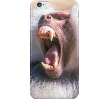 Close-up portrait of an Olive Growling Dominant male Hamadryas baboon Close-up portrait of an Olive baboon (Papio anubis) iPhone Case/Skin
