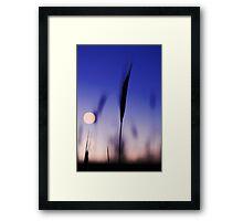 Blade  Framed Print