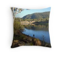 Dunns Swamp#2 Throw Pillow