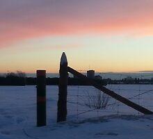 Frosty Pink Morning by Indigo613