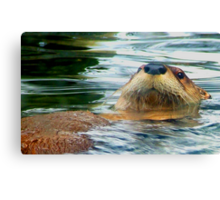 The Otter Canvas Print