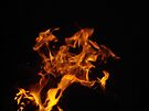 Fire Faces...3 by markgb