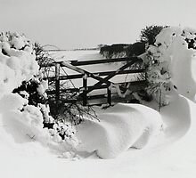Snowy Gate by Mike Paget