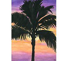 Flagler Beach Palm Tree Photographic Print