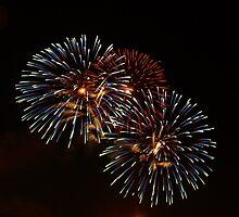Australia Fireworks 2 by Moxy