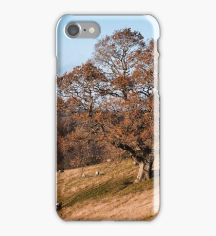 AUTUMN TREE ON A HILLSIDE iPhone Case/Skin