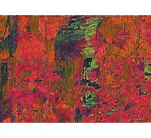 THE RED ONE Photographic Print