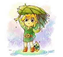 My little Link ! Photographic Print