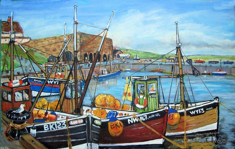 Seahouses' Harbour and Fishing Boats by Woodie