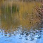 Reflected Autumn by KerrySlade