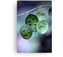Three Pod Night Canvas Print