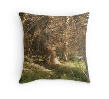 Sunset at the forest Throw Pillow