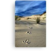 Emu Tracks 2. Canvas Print