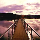 Dunedin Harbour2 by bouche