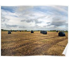 Silage bales Poster