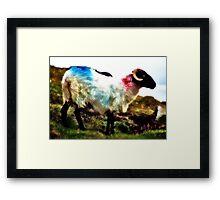 Ovine View Framed Print