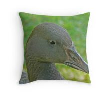 A Lesser Snow Goose Gosling Throw Pillow