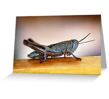 MR HOPPER Greeting Card