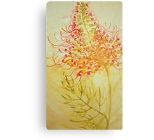 grevillea 'for the love of flowers' © 2007 patricia vannucci  Metal Print