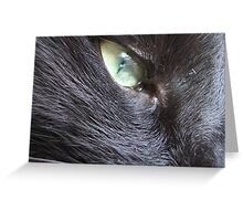 eye of the domestic tiger Greeting Card