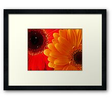 Bright... Framed Print