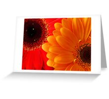 Bright... Greeting Card