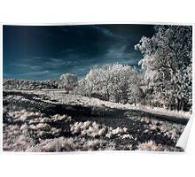 Infrared Landscape Poster