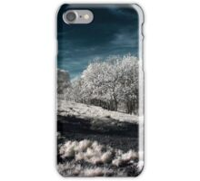 Infrared Landscape iPhone Case/Skin