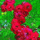 Red Roses by Tymlaird