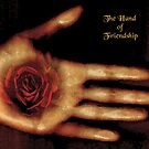 The Hand of Friendship by saleire