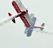 Wingwalkers by photobymdavey