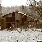 Old Barn by flyfish70