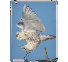 Graceful landing iPad Case/Skin