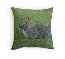 Wild Urban Rabbit Throw Pillow