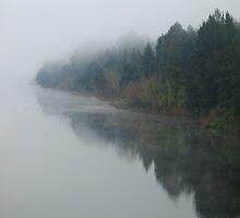 Hawkesbury river by Martin  Hoffmann