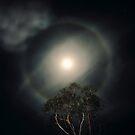 Lunar Halo by Ern Mainka
