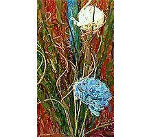 Swirls. Spike & Flowers Photographic Print