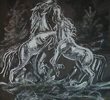 Wild Horses by Jodi Franzke