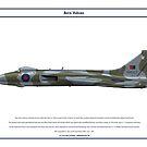 Vulcan B2 44 Sqn 1 by Claveworks