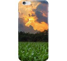 Sunset Cornfield iPhone Case/Skin