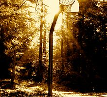 Basketball hoop by Robbs