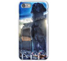 Black Lab - Mallard Down iPhone Case/Skin