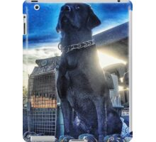 Black Lab - Mallard Down iPad Case/Skin