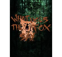 What Does the Fox Say?! Photographic Print