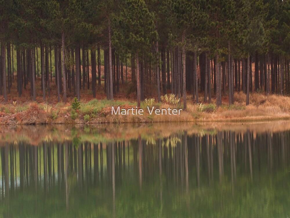 Mirror by Martie Venter