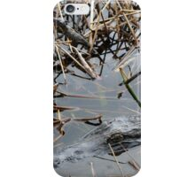 Mother and baby Alligator iPhone Case/Skin